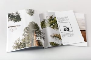 Booklet Magazine Design